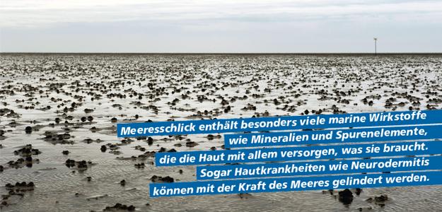 La mer Reportage: Meeresschlick