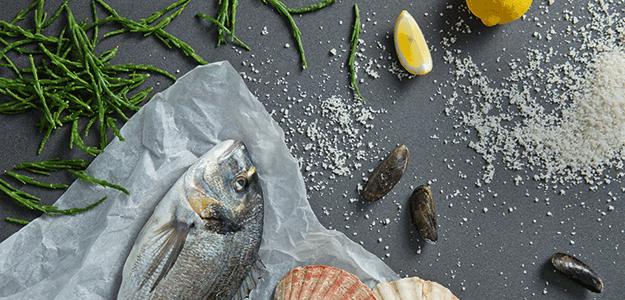 Die ideale Vorbereitung von Fischgerichten.