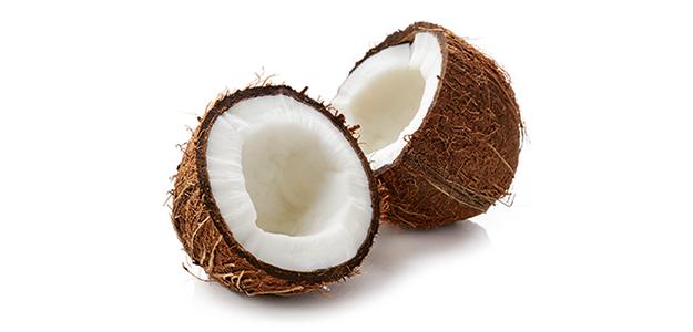 Alleskönner-Kokosnuss